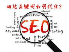 网站关键字优化成功案例(各类网站的案例分析