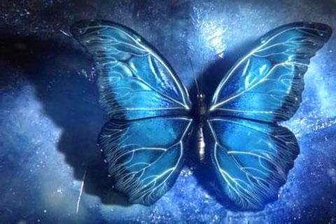 2017年,手机厂商需警惕蝴蝶效应