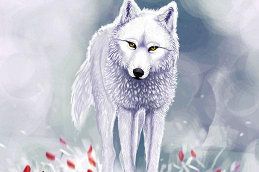 揭秘空手套白狼的黑se产业链,简单