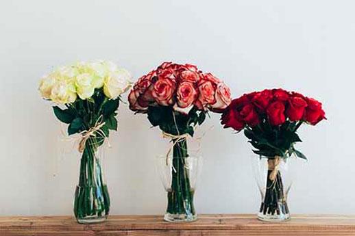 物流赋能下,Flowerplus花加如何颠覆传统模式?