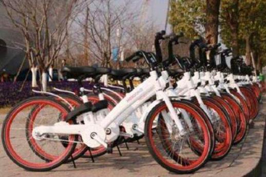 哈罗单车悄然现身北京,在等机会