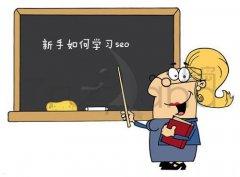 新手SEOer常见的偏激表现和如何学习SEO?