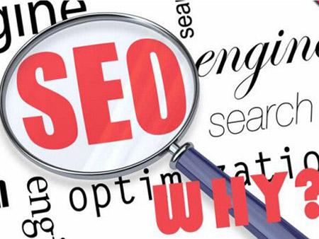 如何正确使用SEO综合查询工具?