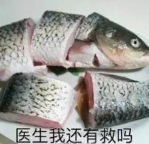 带鱼孩子刷爆网络粗心爸爸这样解释!