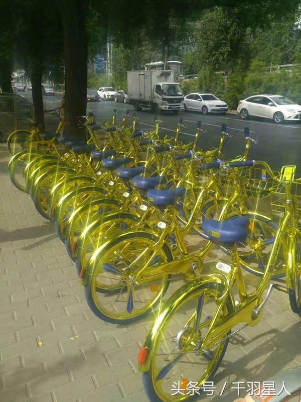 一块钱土豪!海尔推出金色共享单车,真是亮瞎了我的眼!