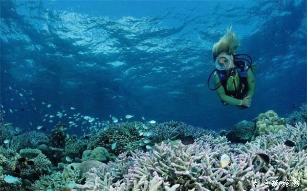 在珊瑚岛体验海底漫步——泰国六日游之第4天