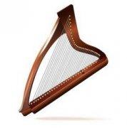 竖琴价格一般多少钱,学竖琴价需
