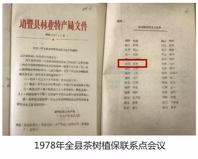 东和茶叶网官网价格(茶叶生意不好做) 网络快讯 第1张