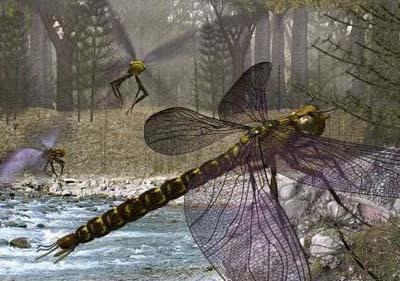 巨脉蜻蜓现在还存在吗?