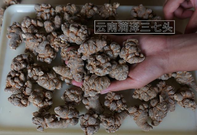 三七粉多少钱一斤,三七粉的作用与功效!