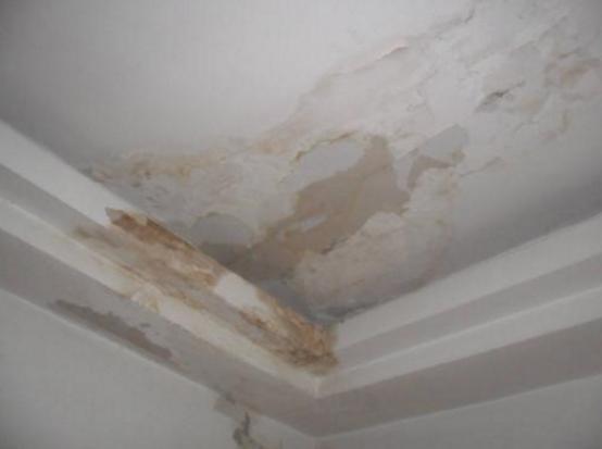 家里的房顶漏水怎么办(平房漏水最好的解决办法)