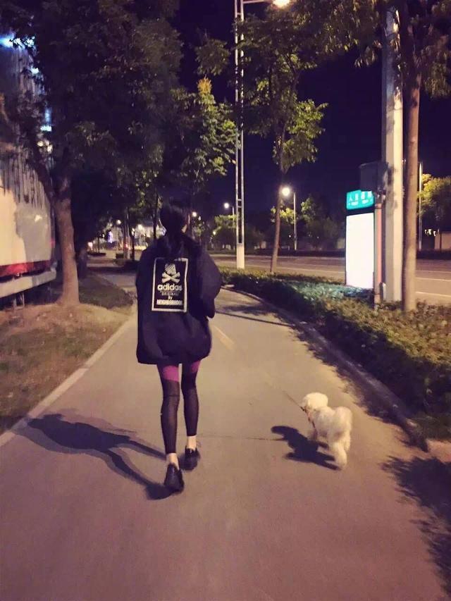 张馨予发文悼念去世爱犬,网友:人不如狗系列