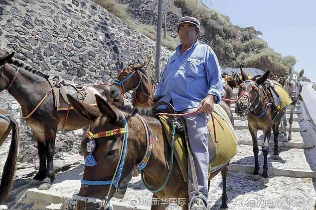 希腊禁止肥胖游客骑驴观光,原因让人哭笑不得……