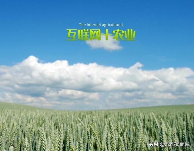 """""""互联网+农业""""的兴起,七个注意事项让你成为行业领跑者"""