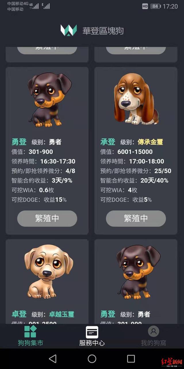 """网上投钱疯狂""""抢狗""""400人玩虚拟游戏被骗300多万"""