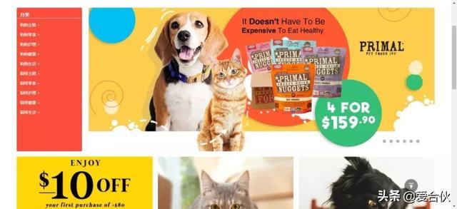 宠物类创业商机悄然来临,我发现3个合伙好项目