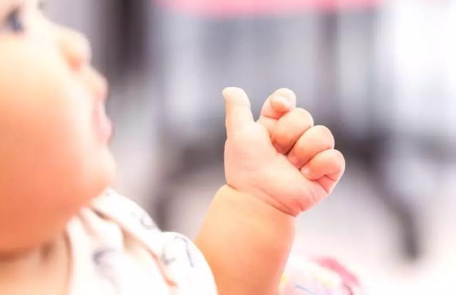 0-3岁不同年龄阶段,孩子认知启蒙的重点是什么?