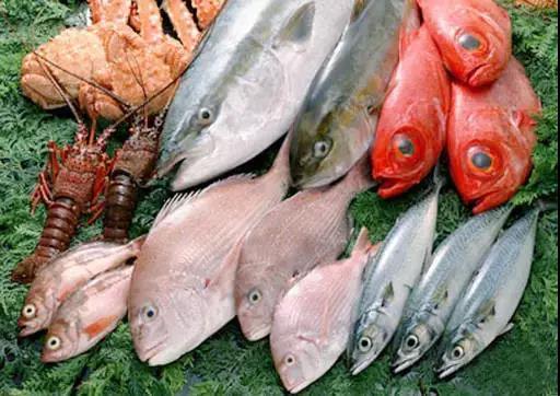 """多吃""""脑黄金""""孩子更聪明。十大深海鱼,你认识几种?"""