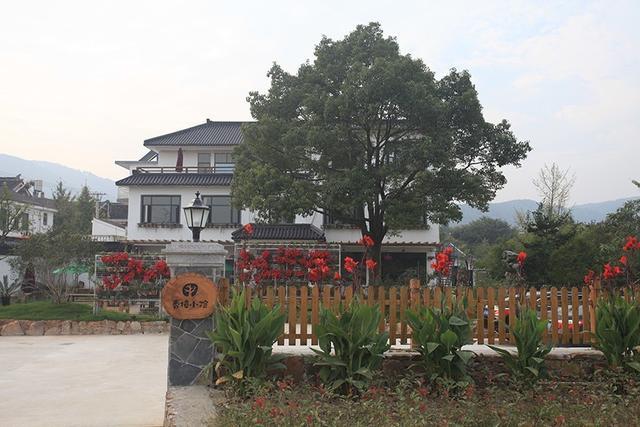 豫樟生西山,未到人先知——香樟小院