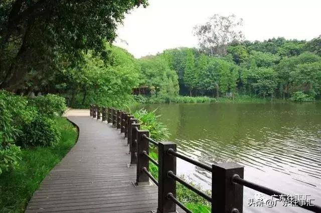 广州白云湖公园