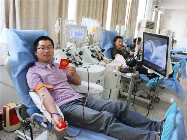 无偿献血者注意啦!这个微信公号能查血检结果和记录