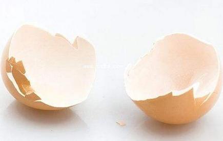 鸡蛋壳能吃吗看法;分享鸡蛋壳能吃吗