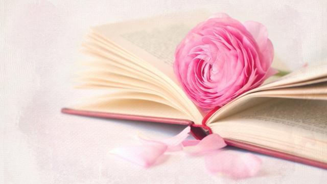 喜欢粉色的人有怎样的心理?