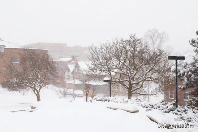 美国建筑学专业最牛的8大院校