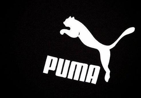 一头豹子是什么牌子 puma彪马品牌详解