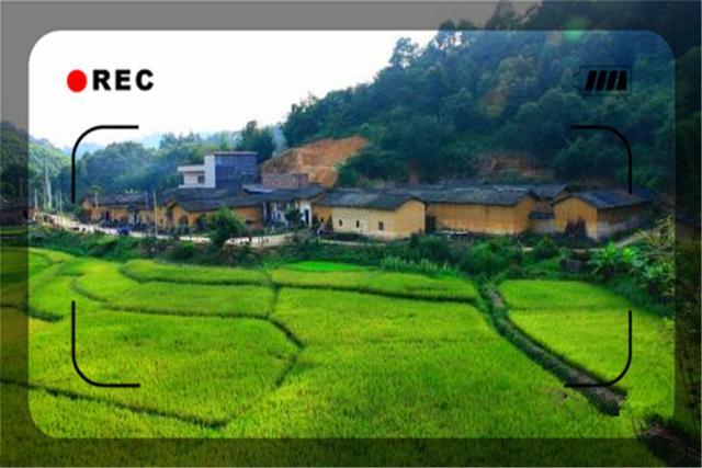 这几个农村致富小项目,做起来非常轻松,赚钱一点也不少