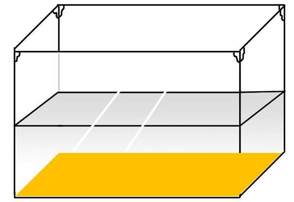 这一篇,搞定长方体和正方体的表面积