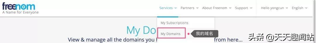 新手免费域名申请及使用