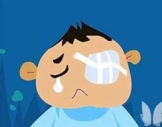 小孩不慎弄瞎他人眼睛,宝山法院判决赔偿38万余元