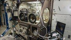 我国空间站建成指日可待,一起来预习,这轨道上的科学实验殿堂